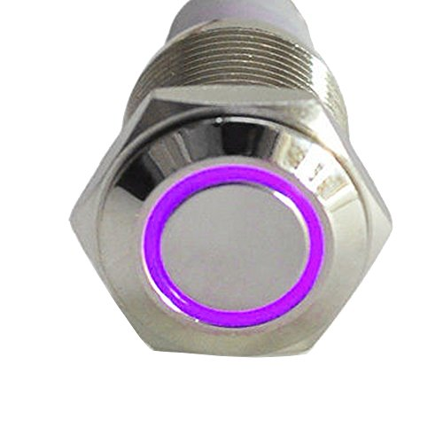 E Support 12V 5A Car Auto Boat Purple Angel Eye LED Light Lamp Metal Push Button Rocker Toggle Switch On Off