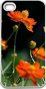 Dseason Iphone 4S case, Slim Hard Unique Design Orange flower