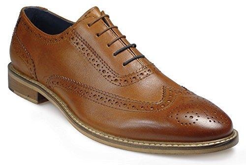 POD Herren Paul ODonnel Hellbraun Brogues Schuhe in Größe UK6 zu UK15 Hautfarben