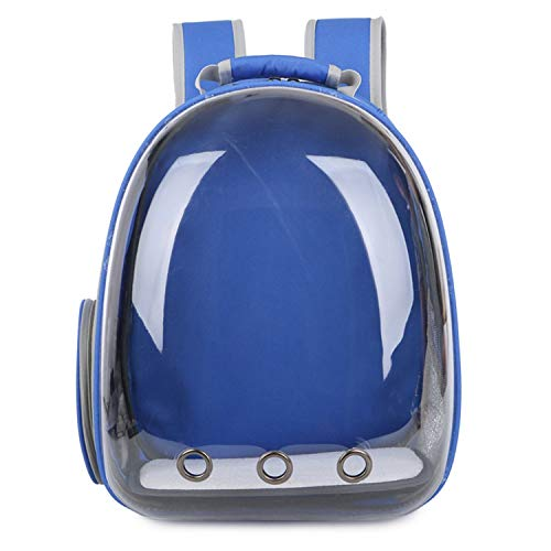5 Colors Breathable Small Pet Carrier Bag Portable Pet Outdoor Travel Backpack Dog Cat Carrying Cage Dropshipping,Blue,France -