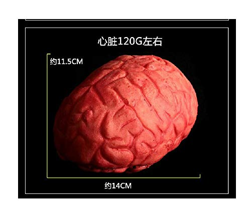1PC Rubber Fake Scary Brain Haunted House Organ Body Prop Halloween Decoration 13x8.5 cm 13x8.5 cm