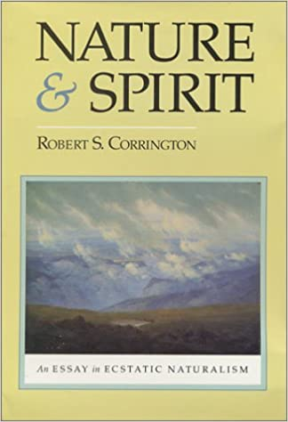 nature and spirit an essay in ecstatic naturalism robert  nature and spirit an essay in ecstatic naturalism 1st edition