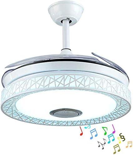 RuiWing 42'' Modern Ceiling Fan