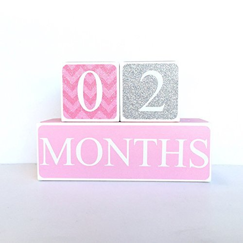 Pink and Gray Baby Age Blocks, Milestone Blocks, Photo Prop, Countdown Blocks