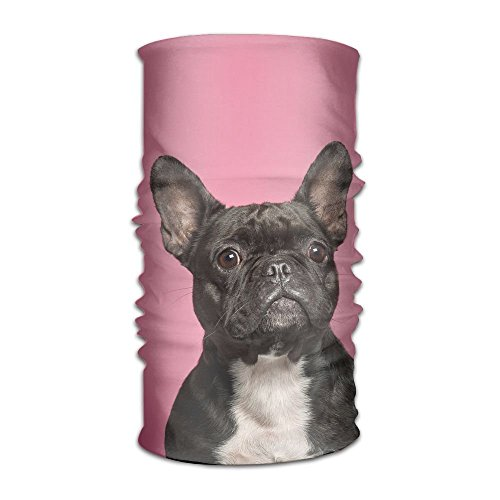 Headbands Headwear Bandana French Bulldogs Scarf Wrap Mask Sweatband Outdoor Headscarve -