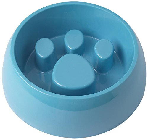 Cheap PetRageous 6 Cup Chow Time Slow Feed with Non-Slip Bottom, Large, Aqua