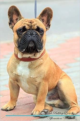 Buy French Bulldog Affirmations Workbook French Bulldog