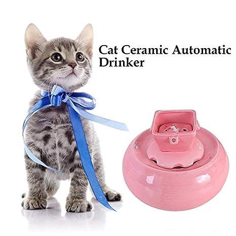 Bebedero Gatos Fuente de Agua de cerámica para Gatos con ...