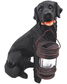 Merveilleux Black Labrador Dog Sitting Down With Lantern Solar Light In Mouth