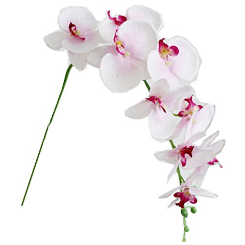 1-x-Artificial-Butterfly-Orchid-Flower-Plant-Home-Decor-Fuchsia