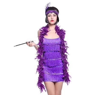 Fringe Style 1920's Flapper Girl Charleston Gatsby 6 layer Fancy Dress Costume Cigarette Holder Headband