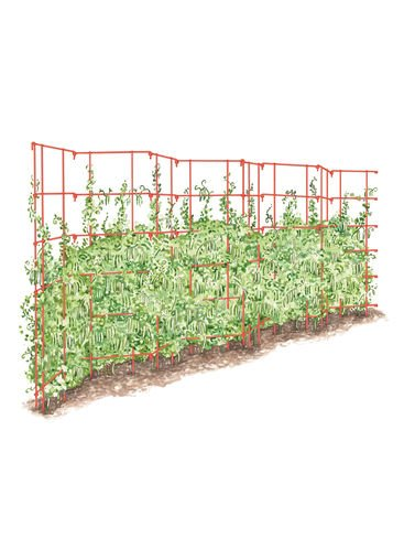 Gardeners Supply Company Expandable Trellis