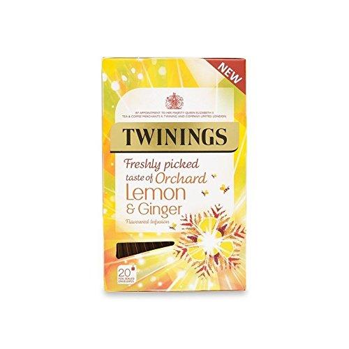 Twinings Freshly Picked Taste of Orchard Lemon & Ginger 40g - 20 Envelopes (Pack of 6) by Twinings