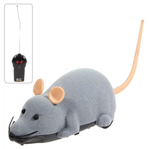 Electronic Remote Control Mouse Toy for Trick/Playing with Cat Gray 41A31XnWqyL