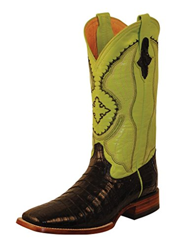 Caiman Croc (Ferrini Mens Belly Caiman Croc Sq Boot 12D Lime)
