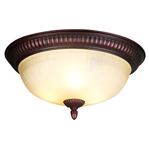 Amazon.com: Lámpara de techo, pantalla de cristal, lámpara ...