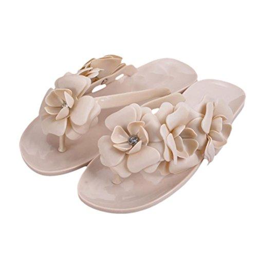 Winhurn Bohemia Style Women Sandals Fashion Flat Heel Flip Flops Beach Slippers (Designer Style Slipcover)