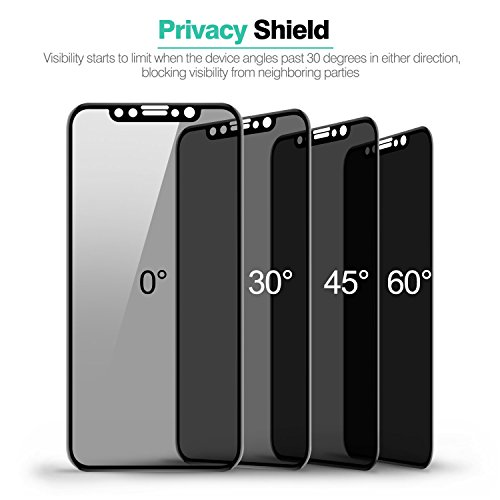 Review iPhone X Privacy Screen