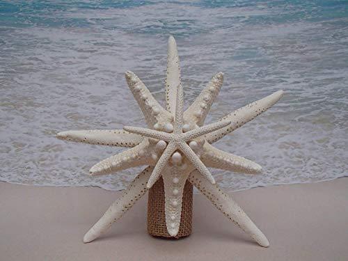 SALE! Starfish Tree Topper - 5-6