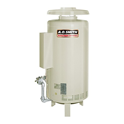 AO Smith HW-520 Commercial Natural Gas Hot Water Supply B...