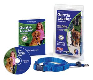 (Gentle Leader Quick Release System, Small, Fawn)