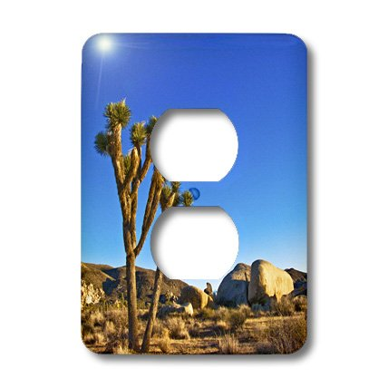 3dRose LLC lsp_13902_6 Joshua Tree Landscape, 2 Plug Outlet Cover