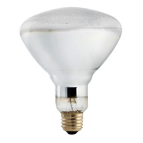 150 Watt Reflector Flood Light Bulb in US - 9
