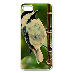 Bird On A Fence Watercolor style Cover iPhone 5 and 5S Case (Birds Watercolor style Cover iPhone 5 and 5S Case)