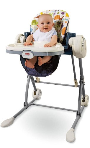 Fisher-Price Swing to High Chair, Mosaic: Amazon.ca: Baby