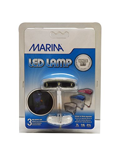 Marina Led Light