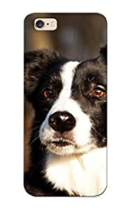 2050b562268 Tpu Case Skin Protector For Iphone 6 Plus Border Collie With Nice Appearance For Lovers Gifts
