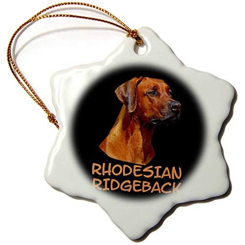 3dRose Sven Herkenrath - Animal - Portrait of A Rhodesian Ridgeback Dog Breeds - 3 inch Snowflake Porcelain Ornament (ORN_290715_1) ()