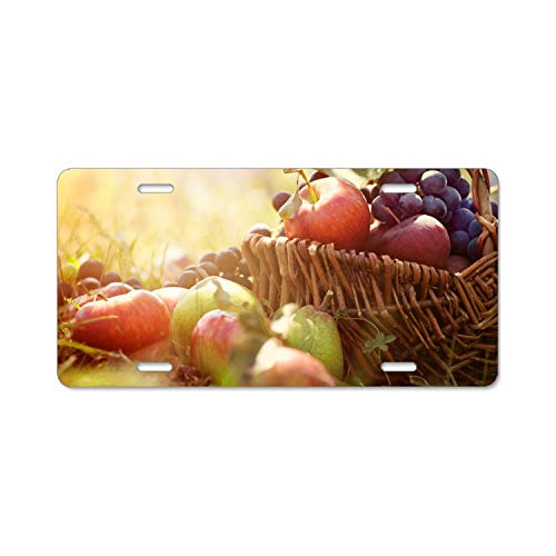 Hzhao Basket Grapes Apples Pears Greens Sun Car Vehicle License Plate Metal Tin Sign Plaque