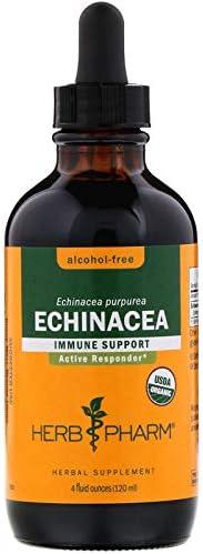 Herb Pharm – Echinacea Alcohol-Free 4 oz [Health and Beauty]