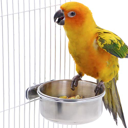 BWOGUE Bird Parrot Feeding Cups with Clamp Stainless Steel Food Water Bowls Dish Feeder for Cockatiel Conure Budgies…
