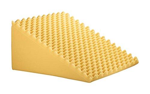 Miles Kimball Foam Wedge Pillow