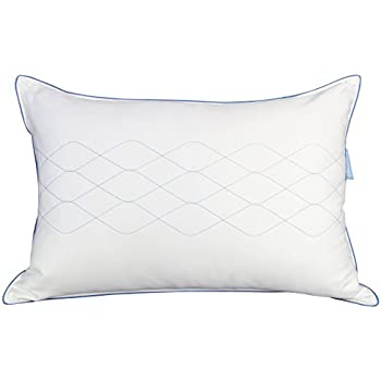 posturepedic sealy review ghk reviews home pillow response mdn products
