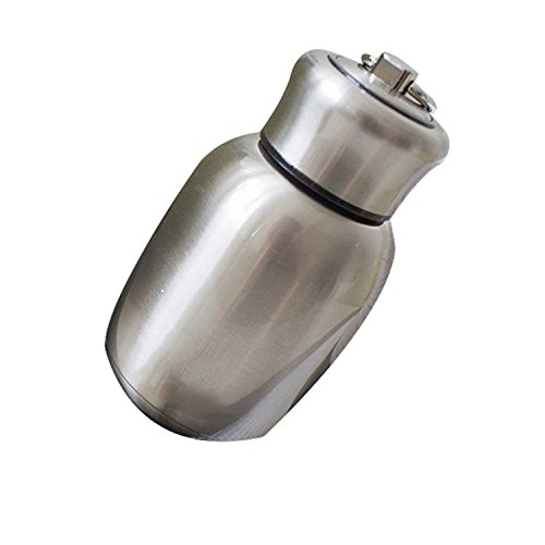 Mini 250 ml Stainless Steel Vacuum Flask Thermos Bottle Travel Insulated Food Container 5 Colours Available Rose Naisidier