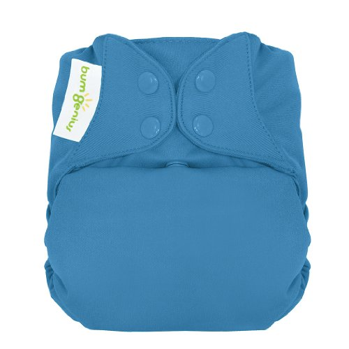 bumGenius Freetime All-in-One One-Size Snap Closure Cloth Diaper (Moonbeam)