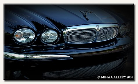 Mesh Grille Insert for Jaguar X-Type 2002 2003 2004 2005 2006 2007 models by Mina Gallery