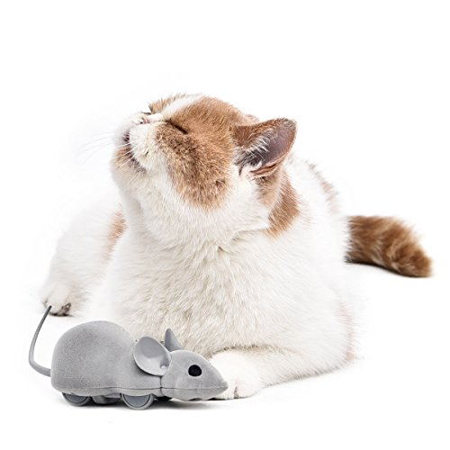 PAWZ Road Cat Toys Bluetooth Remote Control Electronic Rat Mouse Toy by Smartphone for Cats and Small Dogs