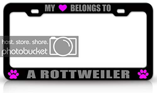 Heart Rottweiler - Customola - My Heart Belongs to A Rottweiler Dog Pet Steel Metal Auto License Plate Frame Tag Holder Bl/SIL