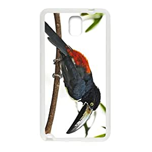 Toucan Parrot Hight Quality Plastic Case for Samsung Note3