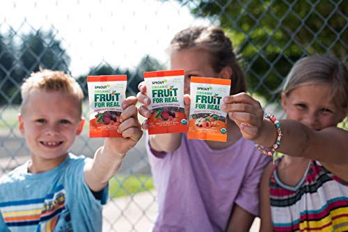 Sprout Organic Fruit For Real Pressed Veggie & Fruit Snacks, Orchard Fruit & Carrot, 0.63 Ounce Single Serve Packets (Pack of 20) (Packaging May Vary)