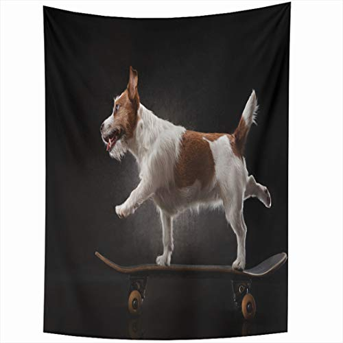 - Ahawoso Tapestry 60x80 Inch Ride Skateboard Jack Russell Terrier Dog Riding On Sports Recreation Humor Trainer Dynamic Design Wall Hanging Home Decor for Living Room Bedroom Dorm