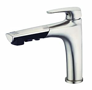 Danze D456710SS Taju Pull Out Kitchen Faucet (Stainless Steel)