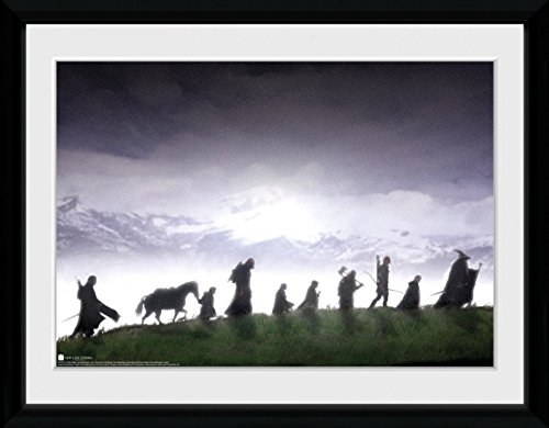 Of Ring Fellowship The Movie Poster - The Lord of The Rings Framed Collector Poster - The Fellowship (16 x 12 inches)
