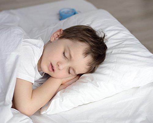 Kinder Fluff Toddler Pillow