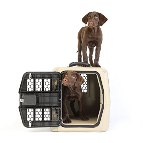 Gunner Kennels G1 Small Dog Crate and Pet Carrier | Crash Tested Pet Travel Crate, Escape Proof, Heavy Duty Dog Kennel | Fits XS and Small Breed Dogs For Sale