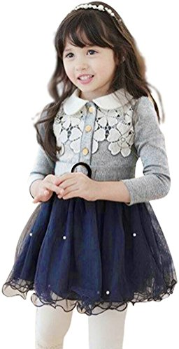 [Little Girl's Lace Flower Princess Tulle Tutu Winter Dresses with Waistband Grey] (Princess Outfit Ideas)